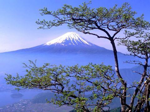 漂亮的富士山【龙吟原创摄影】 - 龙吟 - 龙吟酒肆
