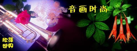 欣萍世界专用图片 - 星语心愿 - [心灵别墅]--星语心愿