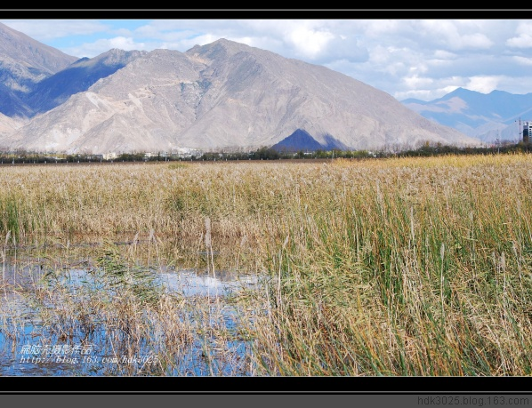 [原 摄]西藏秋韵(三十八)拉萨--拉鲁湿地一角8P - 扁脑壳 - 感悟人生