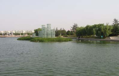 实拍:俺家附近的风景 - 水复花明 - 水复花明