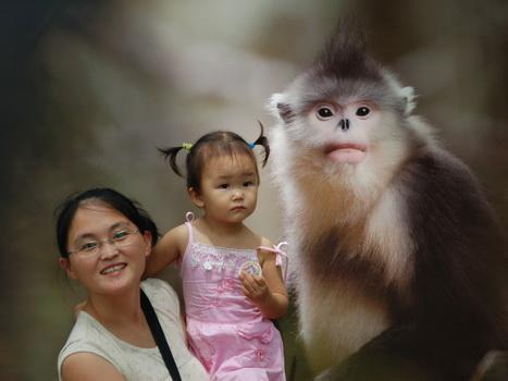 去动物园勾起回忆,发旧照片怀念下小时候