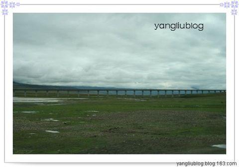 西藏之旅(续) - 杨柳 - 杨柳的博客