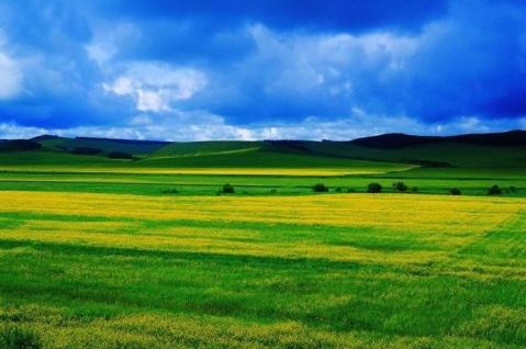 房地产开发商:别拿GDP说事唬老百姓(2) - 清新大草原 - 清 新 大 草 原