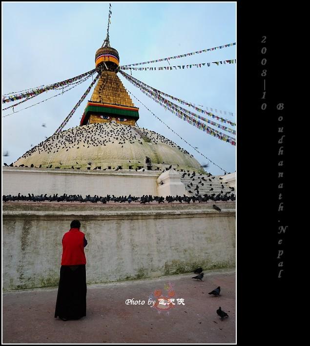 [原摄]如来神眼--尼泊尔(1)博达哈大佛寺 - 飞天侠 - 飞天侠的摄影视界