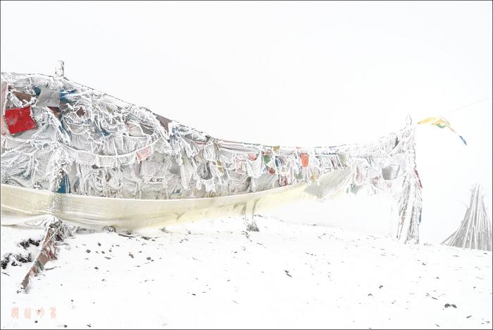 [原创]折多山——霜雪经幡 - 迁徙的鸟 - 迁徙鸟儿的湿地