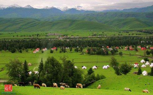 [转载]绝美的北疆梦驼铃