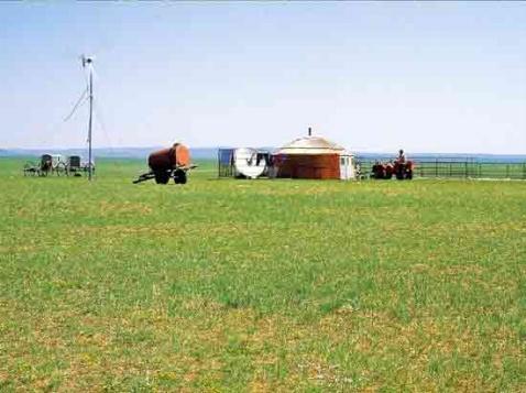 引用 陪你一起看草原(原创) - 冰凌 - 冰凌的收纳盒