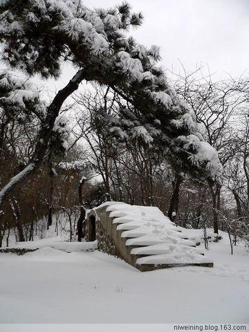 [原创]早春大雪(2009.2.13) - 风动 - 风动的博客
