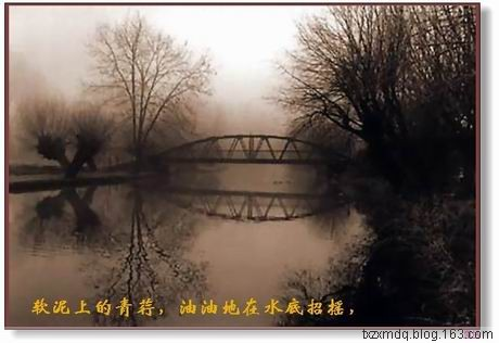 配乐诗朗诵:再别康桥(原) - 风中白帆 - 风中白帆