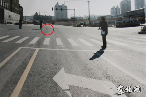 哈尔滨故乡交警大队违法办案!两条人命魂归何处???