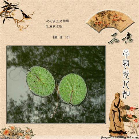 物语相思 - 青松不老 - 枝繁叶茂!祝愿祖国繁荣昌盛!!