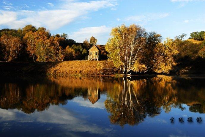 塞罕坝的秋色 - Y哥。尘缘 - 心的漂泊-Y哥37国行