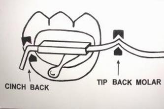 2007年9月07日●cinch back bends(安全回彎)的作法