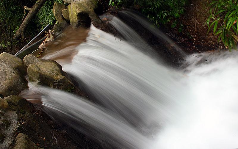 【原创】高山流水(一) - 歪树 - 歪树