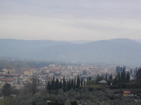 意大利黑柏树 - pfspfs666.popo - 反三的博客