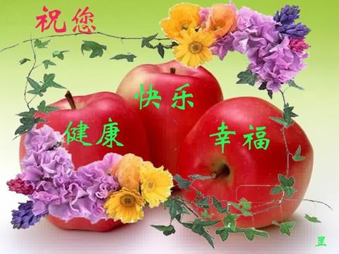 健康之美 - 心安理得 - yu.5091的博客