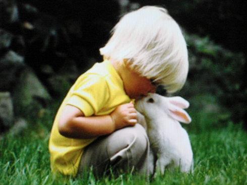孩子和兔的照片