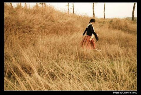 疾风知劲草 - 空山听雨 - 空山听雨:摄影是一种力量