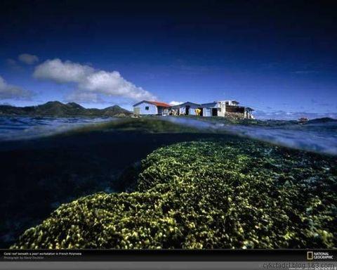 中国海外军事基地 - 胡言乱语 - 我的小屋
