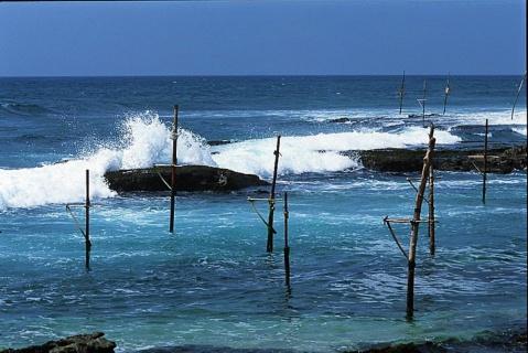 浪漫的斯里兰卡--我の无比向往 - wjxm1995 - wjxm1995的博客