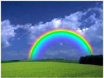 2008年12月5日 彩虹中的你