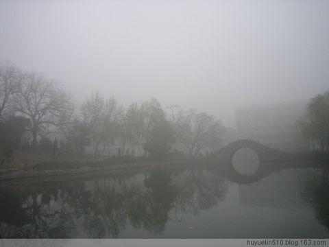 冬 雾 - 成哥 - 成哥小屋