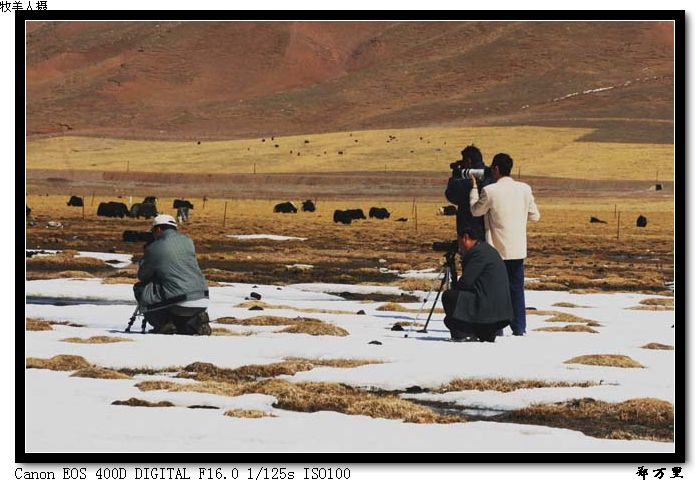 [原创摄影]隆宝写生之三 - 玉树牧羊人 - 玉树牧羊人的博客