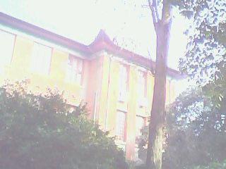 冬天的校园(系楼附近)图  - dreamtower - yora的博客