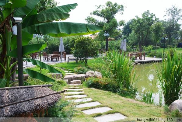 走马观花游湿地 - 品味人生 -