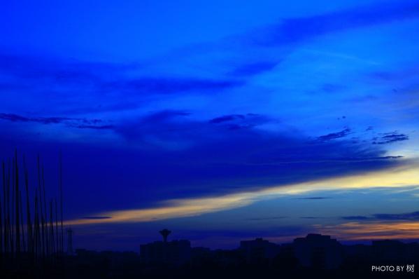 【如是我闻·天光】上篇 ——《树摄影》第三集 - 夜倾城 - 永不褪色的只有黑色