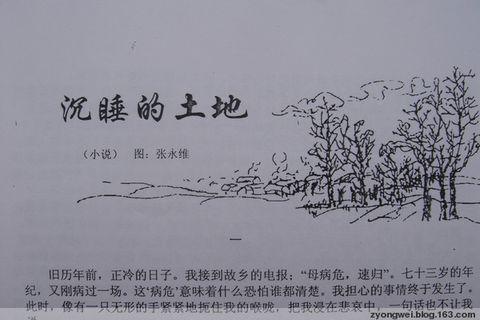 琉琉屯的葬礼 (中篇小说) - 有为 - 有为的博客