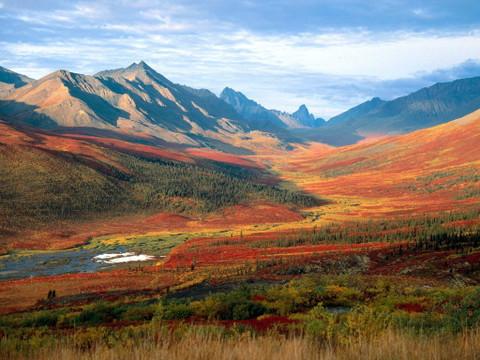 歌词--故乡的泥土【疏勒河的红柳原创】 - 疏勒河的红柳 - 疏勒河的红柳