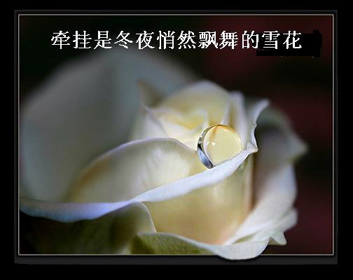 【原创】守望。。 - ziyetanhua220 - ziyetanhua220的博客