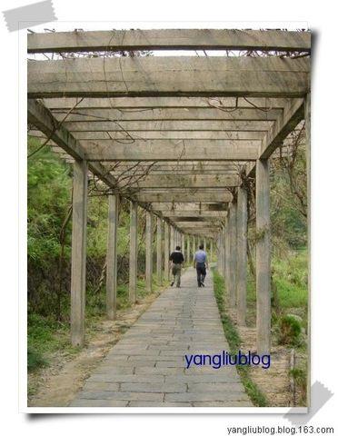太姥山 - 杨柳 - 杨柳的博客