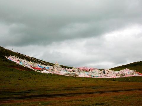 躺在山坡上,仰望天空是那么的高远湛蓝   寺庙住宿区院墙上的花儿.