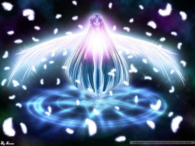 天使的翅膀 - 小幸せな朱朱的日志