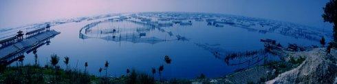 泰安电视台《泰安新闻》节目《行走大汶河》第九十九集 - 汶河两岸是我家 - ncq6688的博客