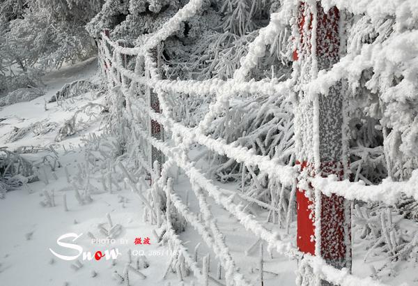 雪 - 微波 - 微波印记