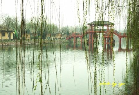 [原创]万里迎春27--开封上河《春光好》 - 自由诗 - 人文历史自然 诗词曲赋杂谈