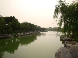 绿柳伴小河----摄于河滨公司