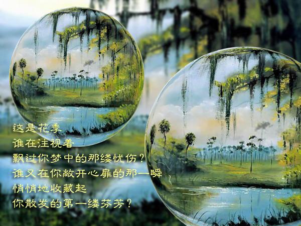诗情画意:(620)水晶世界 - 流星客 - 流星客随笔