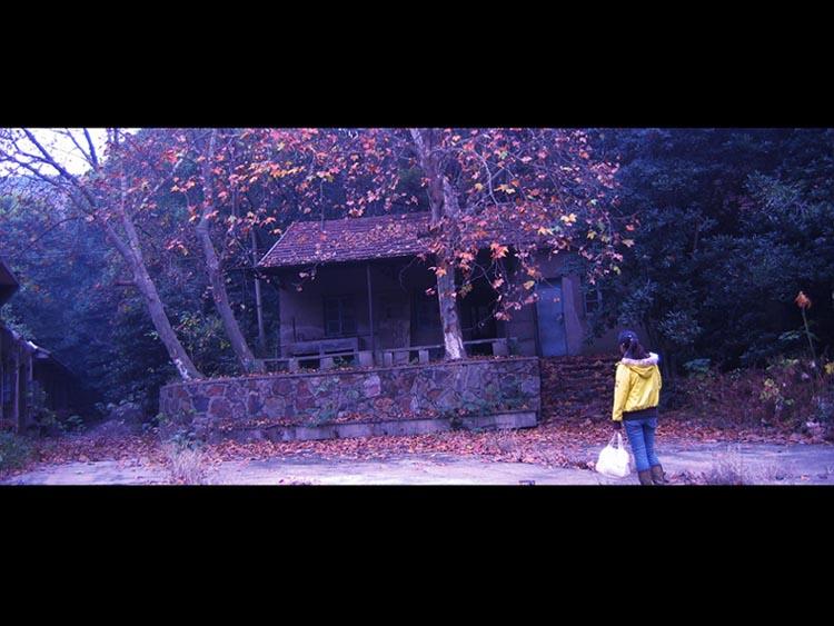 """寻找""""蝴蝶公墓""""过程中拍摄的灵异照片 - 蔡骏 - 蔡骏的博客"""