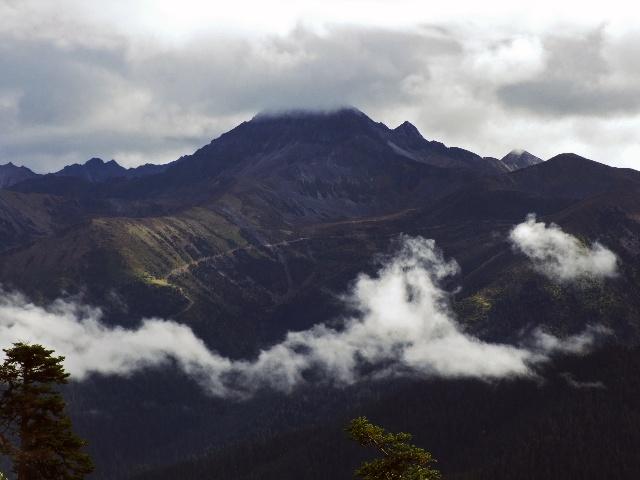 鲁朗林海与小瑞士 -- --雪域西藏行之八 - 侠义客 - 伊大成 的博客