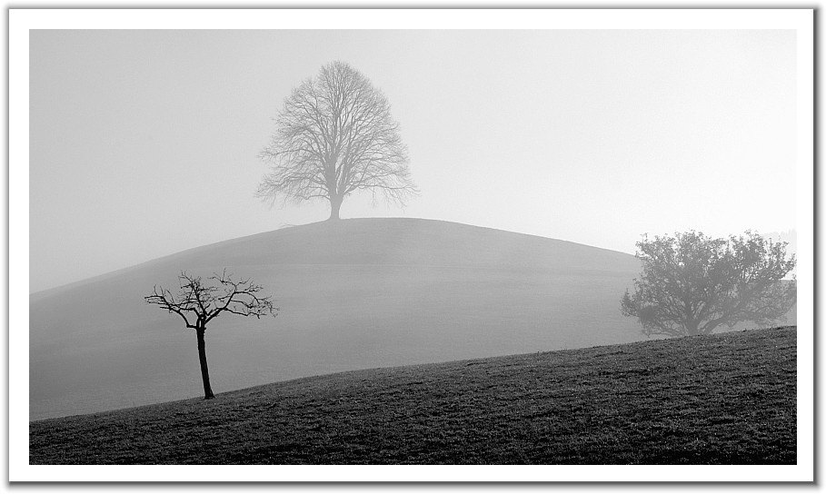 经典【黑白自然】圖片素材 - 天使 - Heaven的博客