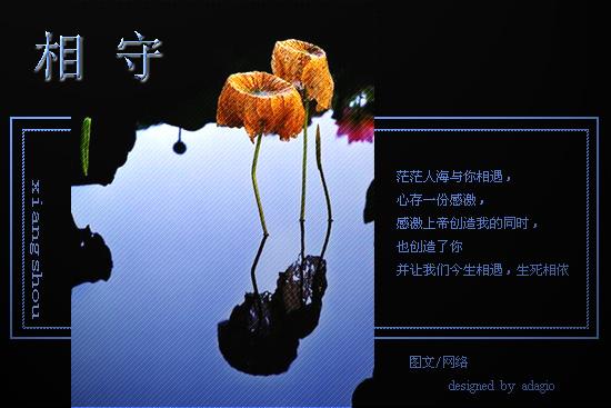 2009年12月24日 - 快乐平馨 - 快乐平馨欢迎朋友光临