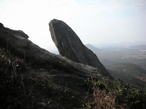 巨石像蜥蜴 - 东南华艺斋 - 东南华艺斋