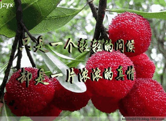 """【墨联原创】镶嵌墨语谢回""""黑莓""""博才友 - 墨联 - 墨海对联书屋"""