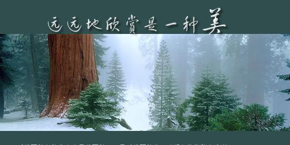 远远地欣赏是一种美 - 烟雨蒙蒙 - 烟雨蒙蒙的博客