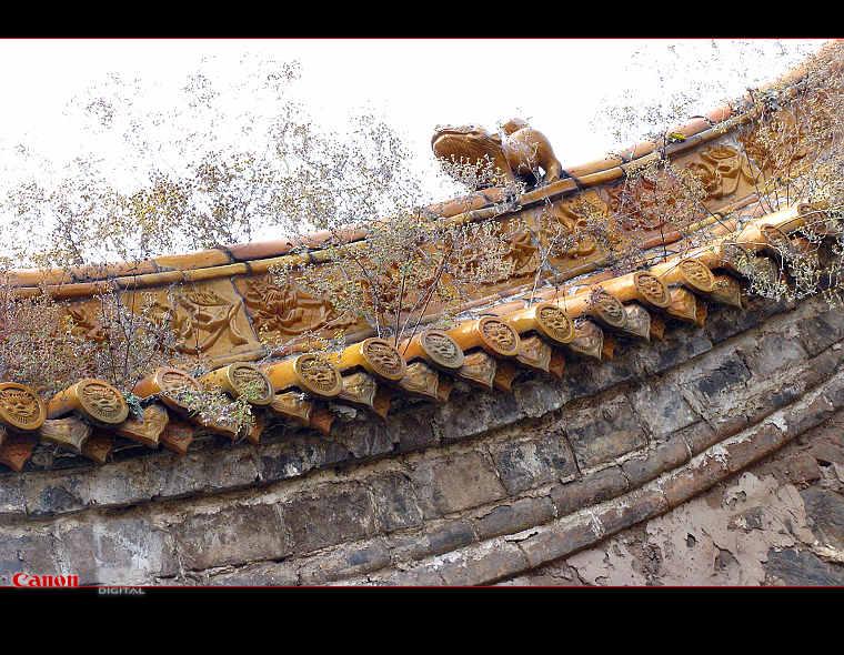 11月8日 郭家园小碾--红土岭--台岭--天平山 - 漂泊   - 漂泊的博客