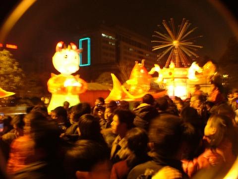 逛2009元宵灯会 - 宸欢 - 张宸欢的网家家